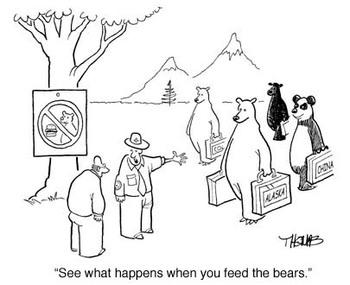 Bearssuitcases1